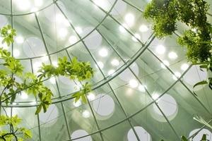 Bu1: Der&nbsp; von Menschenhand angelegte Regenwald&nbsp; wurde mit natürlicher Belichtung für die Pflanzen ausgestattet.Unter der Kuppel tummeln sich freifliegende Vögel und Schmetterlinge<br />