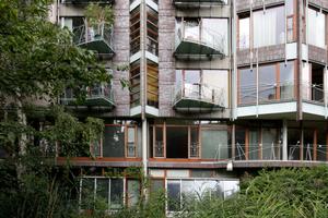 Wohnen mit Grün: Württembergische Straße