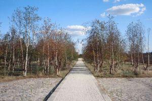 Mauerpark Berlin. Erster grenzüberschreitender Park in Berlin (1994)