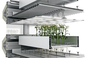 Detail bewegliche Pflanzenmodule<br />