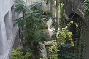 Le Jardin Sauvage, Palais de Tokyo, Paris - Atelier Le Balto, 2002