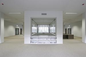 """Verglaste """"Laterne"""" für Licht- und Sichteinfall ins EG"""