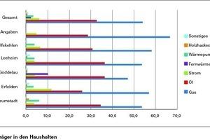 """Prozentualer Anteil der Energieträger in den Riedstädter Haushalten aus der Fragebogenaktion. Bei """"keine Angaben"""" wurde der Stadtteil nicht angegeben"""