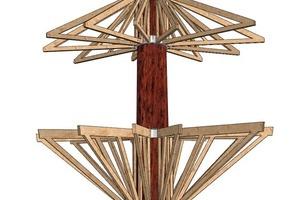 Statik des Baumhauses: Vier Stahlkränze befestigen die Holzrahmenkonstruktion am Stamm, alles Weitere wird daran angehängt