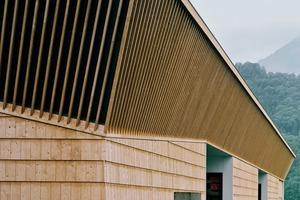 Die vertikal gesetzten Holzlatten vor dunklem Windpapier erinnern an die Lamellen eines Pilzhuts