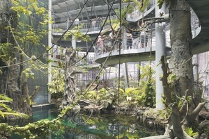Eine ausladende, gewundende Rampe bietet den Besuchern die Möglichkeit, den Regenwald aus unterschiedlichsten Perspektiven und von unterschiedlichen Ebenen aus zu beobachten. Im Untergeschoss befindet sich das Aquarium (43cm dicke Acrylglasscheiben); hier tummeln sich 30000 Lebewesen