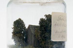Stück Natur eingeweckt, nicht realisiert, Modell 1973 Architekt: Haus-Rucker-Co, Wien Mit dem Objekt unternahm die Architektengruppe Haus-Rucker-Co den Versuch, sich über Verkäufe auf einer Kunstmesse zu finanzieren. Die kleine Hütte ist ein ironischer Kommentar zur Sehnsucht nach dem einfachen, ursprünglichen Leben. Von Umweltzerstörung unberührte Natur kann man nur in einer Glaskapsel erzeugen, im Modell in Form eines »Weck«-Einmachglases.