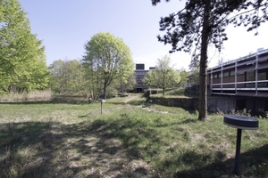 Gestaltete Parklandschaft auf dem Wege zur Natur (hinten ein Wasserbecken)